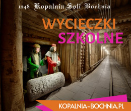 Bochnia 260x220