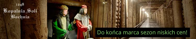 Reklama Bochnia TOP 750x100